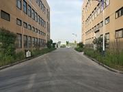 金山亭林底楼厂房出租 层高7米 原房东 104地块 有产证