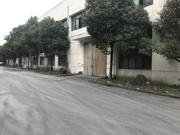 松江车墩单层仓库出租 层高7米 原房东 104地块 有产证
